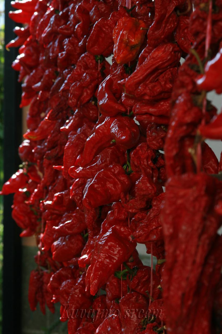 Paprika vrtka –  brend belopalanačkog kraja